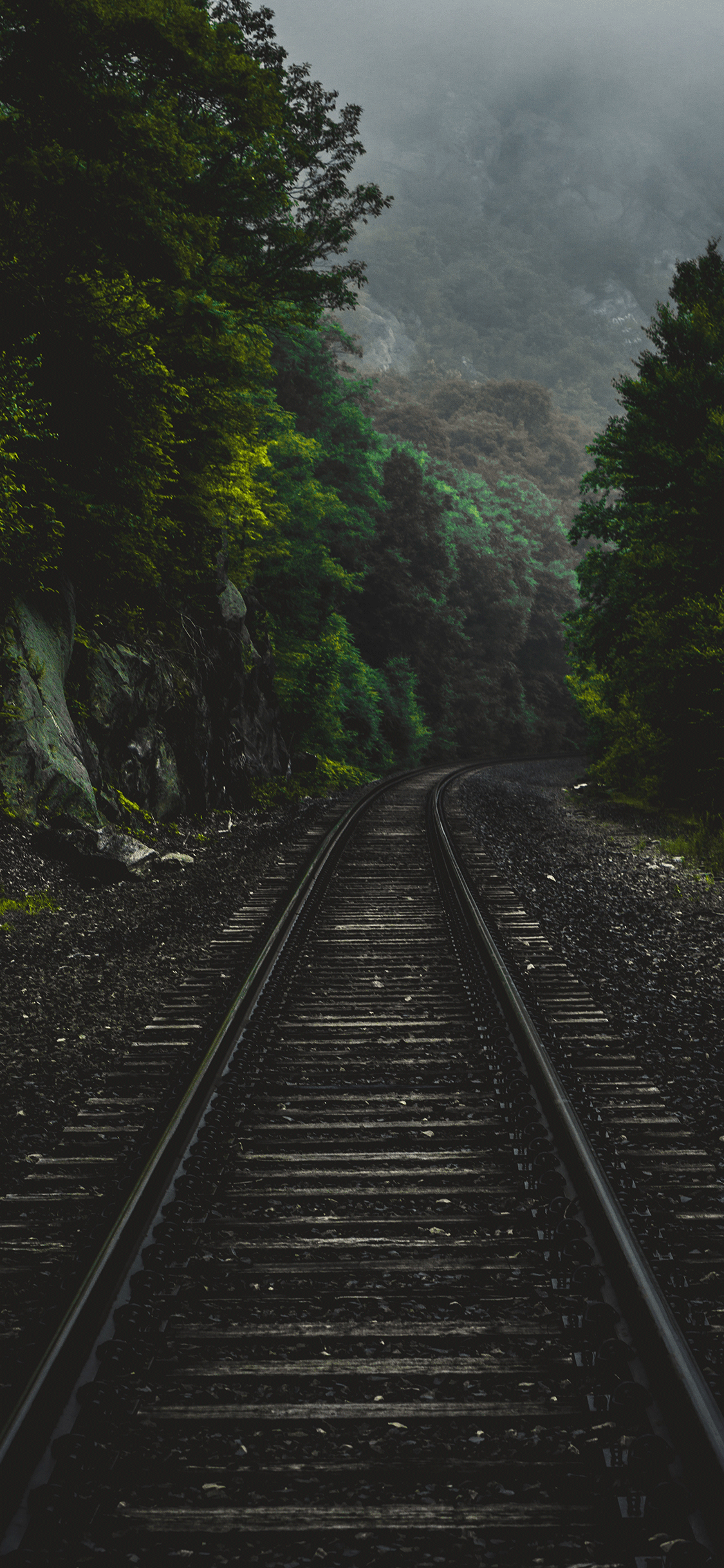 iPhone wallpaper forest train Forest