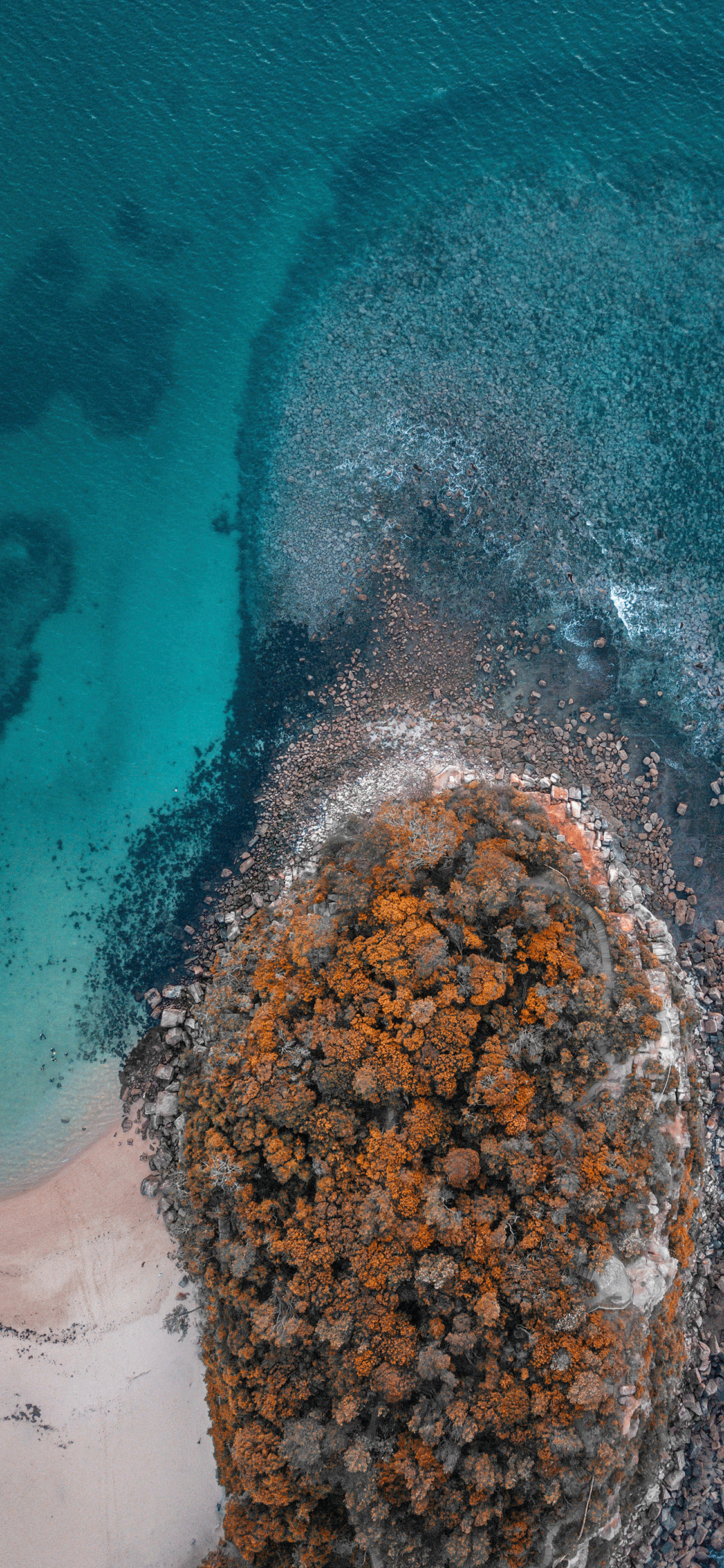iPhone wallpaper aerial photos shelly beach Fonds d'écran iPhone du 18/09/2018