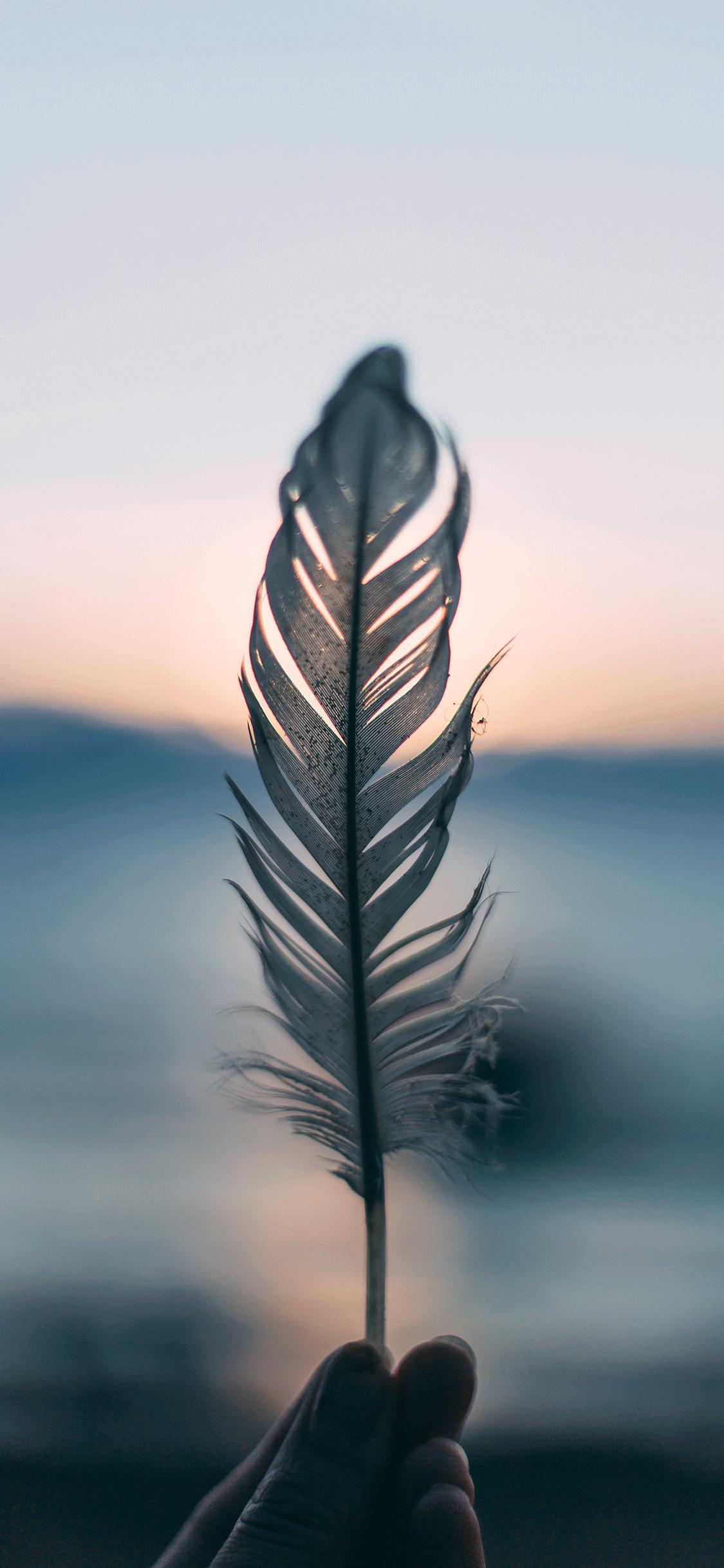 iPhone wallpaper bokeh effect feather Bokeh Effect