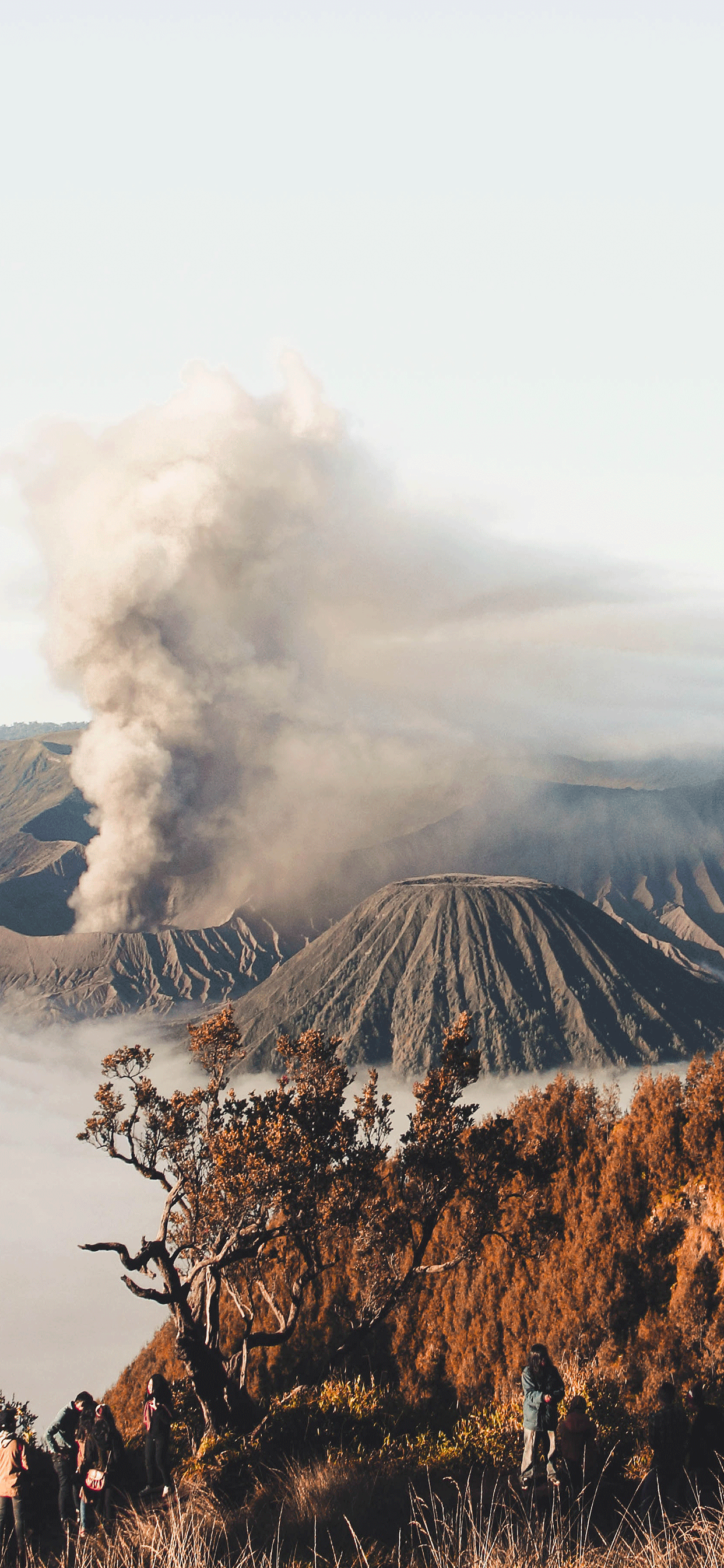 iPhone wallpaper volcano mount bromo Fonds d'écran iPhone du 26/10/2018