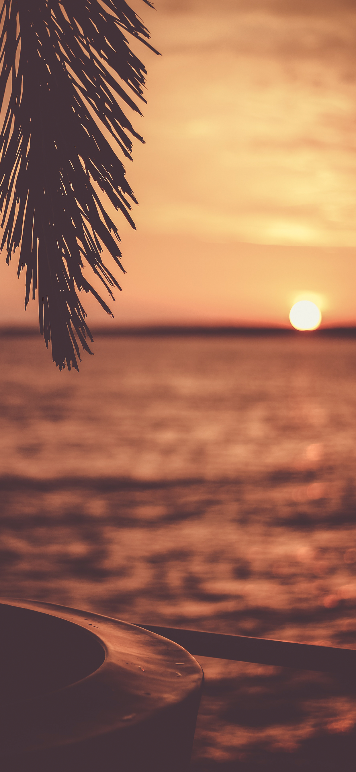 Sunset Wallpaper For Iphone X 8 7 6 Free Download On