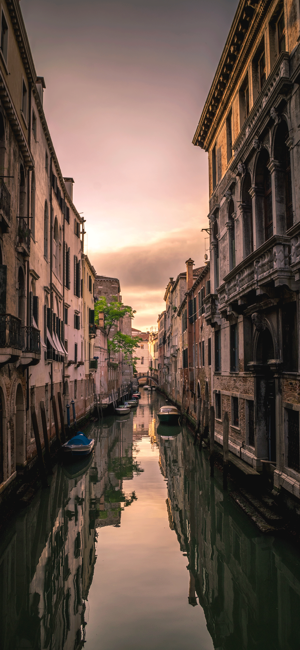 iPhone wallpaper venice sunset Fonds d'écran iPhone du 25/02/2019