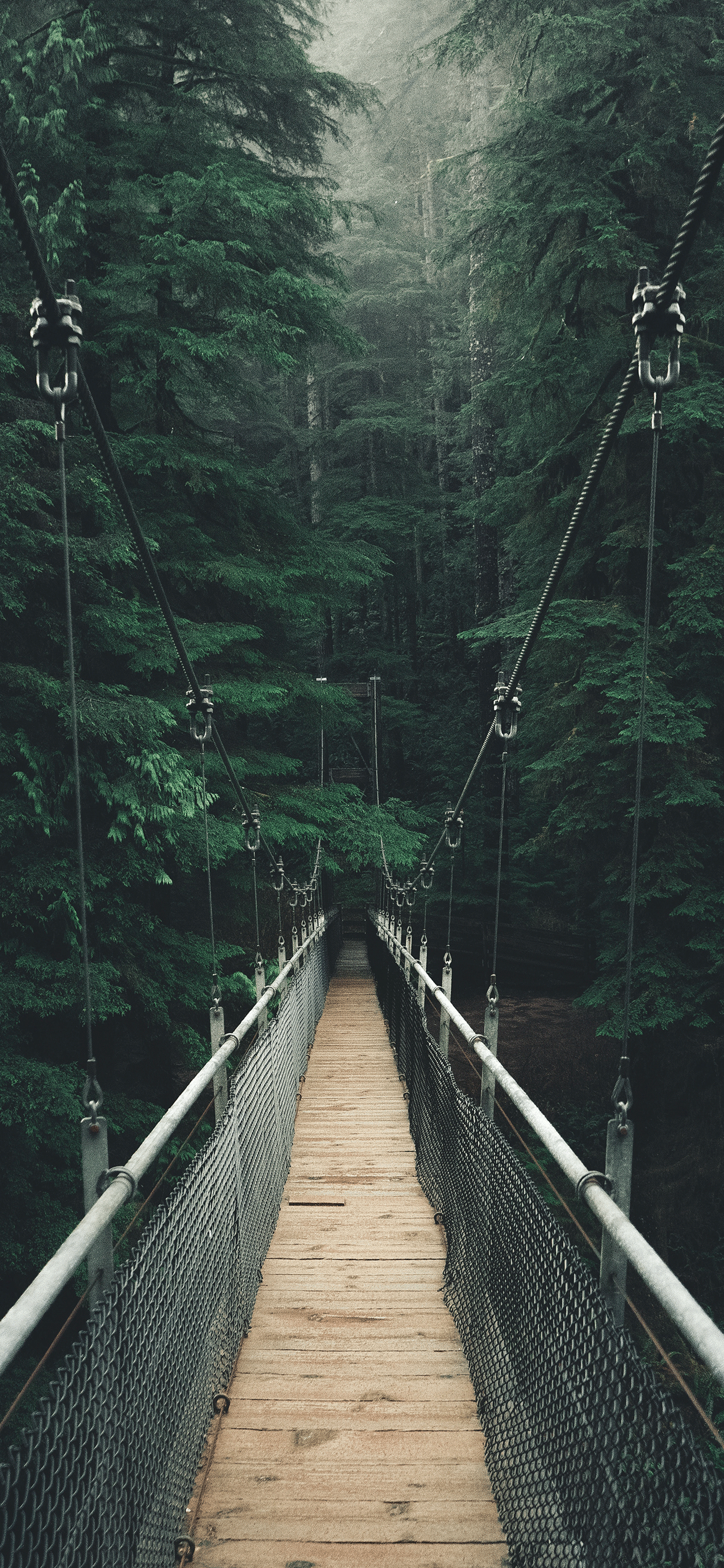 iPhone wallpapers bridge suspension Bridge