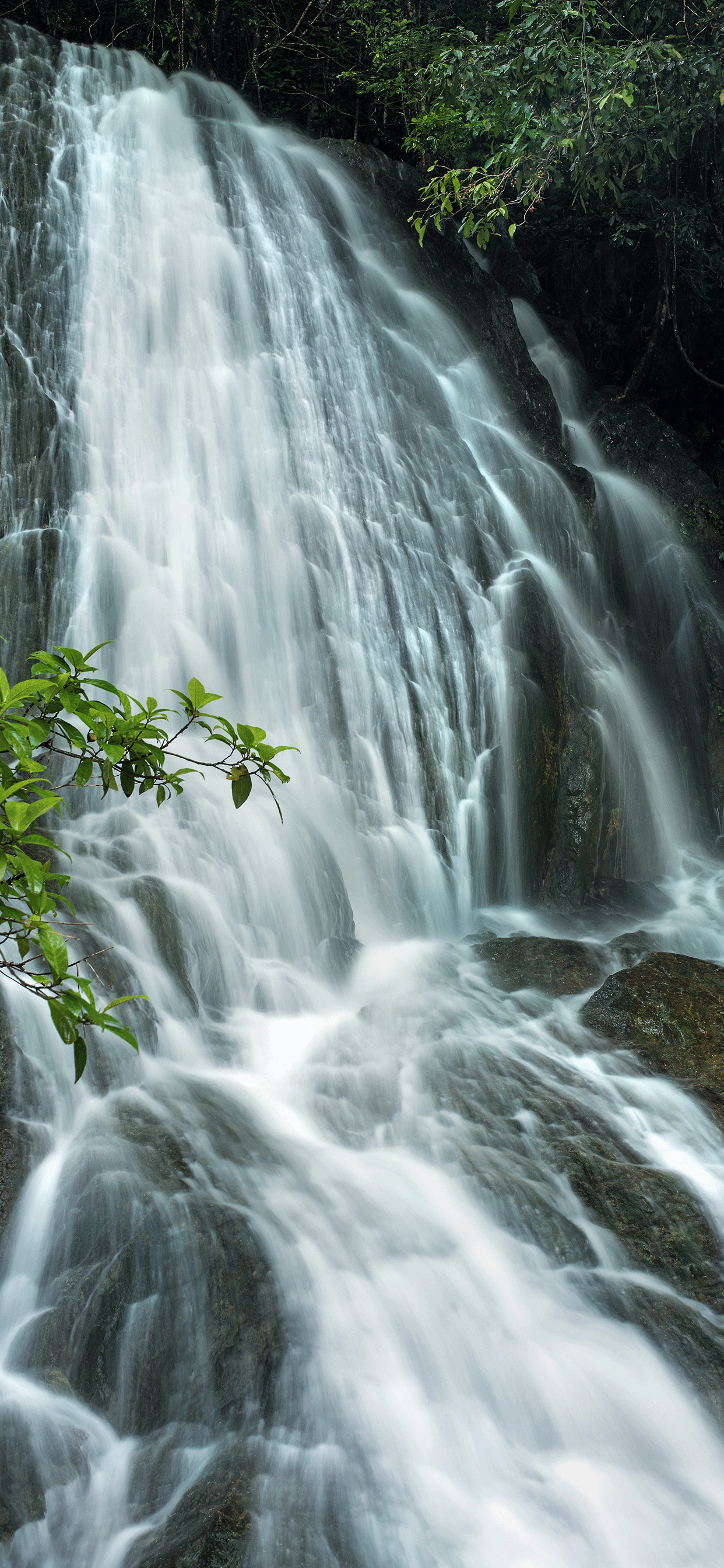 iPhone wallpapers waterfall forest rocks Waterfall