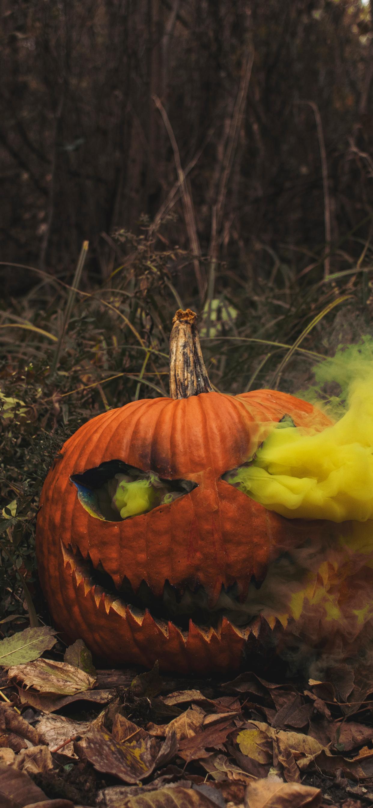 iPhone wallpapers halloween pumpkin orange Fonds d'écran iPhone du 31/10/2019