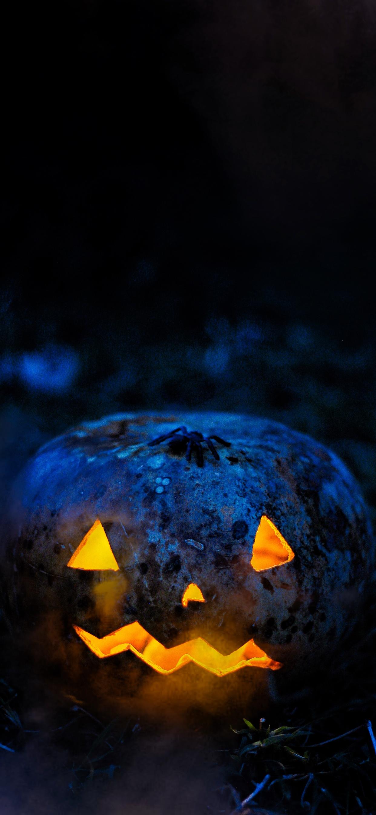 iPhone wallpapers halloween pumpkin spider Halloween
