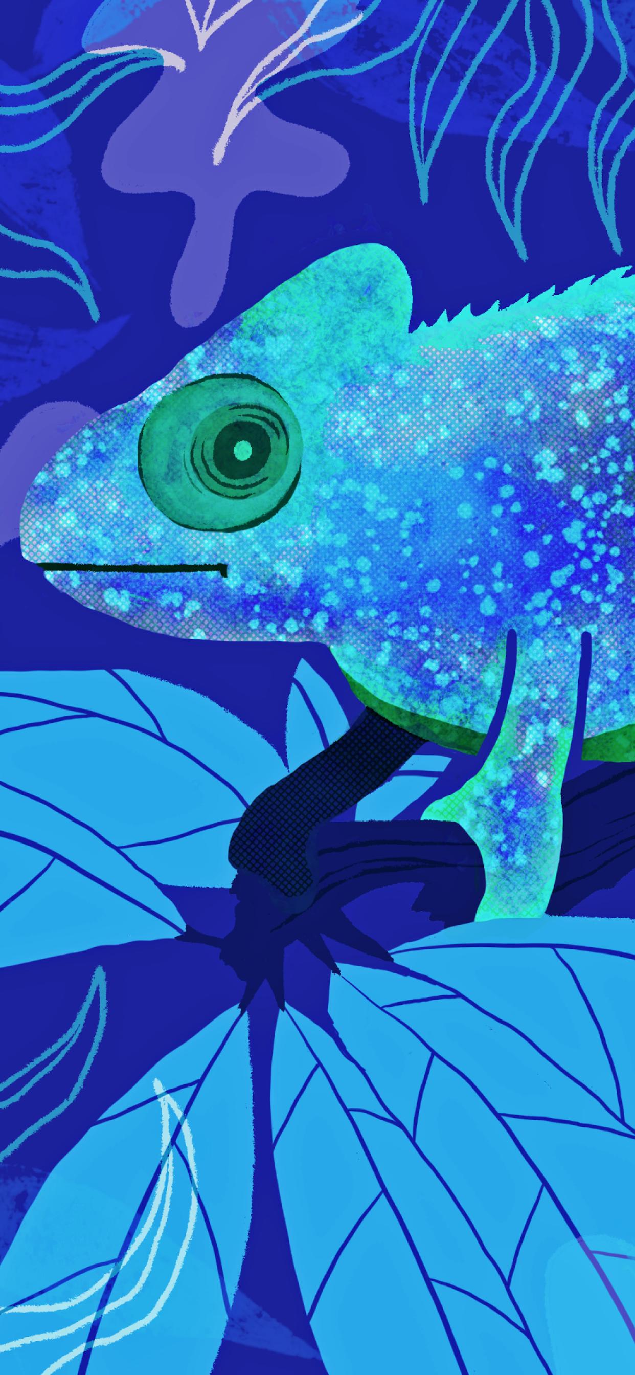 iPhone wallpapers illustration animals chameleon Fonds d'écran iPhone du 18/02/2020
