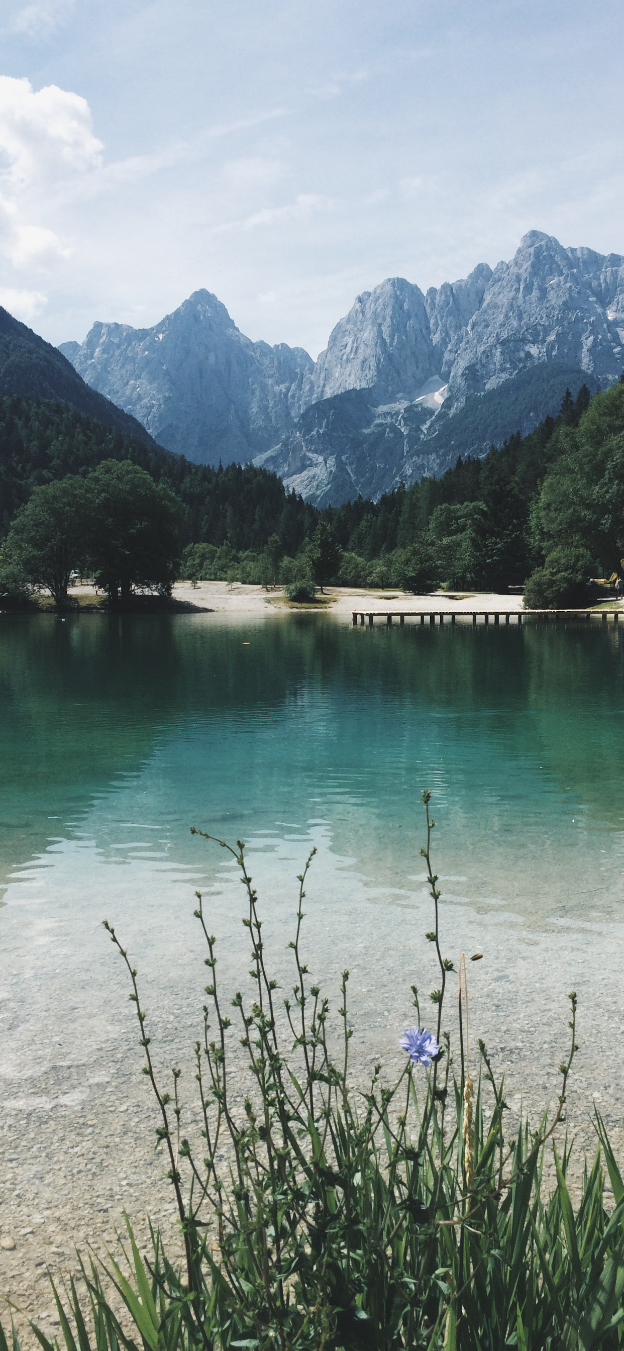 iPhone wallpapers lake green Lake